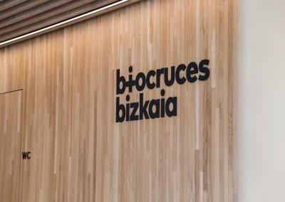 Biocruces bizkaia